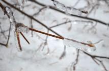 OSHAWA, Ont. (22/12/13) icy wonderland