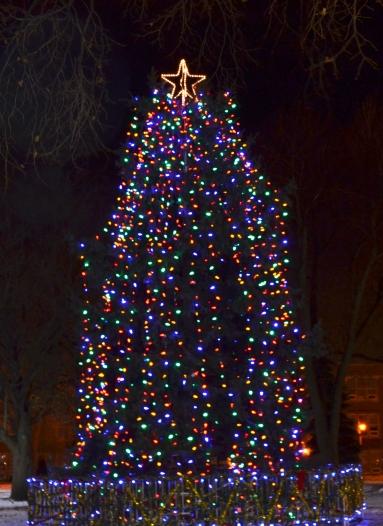 Oshawa Tree Lighting