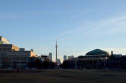 01/25/2016 - Toronto - UofT, Toronto Sign, Photos by Amy Bridges